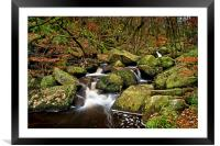 Padley Gorge in Autumn                      , Framed Mounted Print