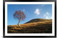 Lone Tree & Dean Hill                   , Framed Mounted Print