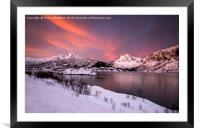 Winter Contrast , Framed Mounted Print