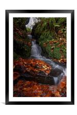 Waterfall In The Woods, Framed Mounted Print