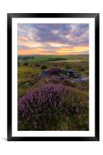 Heather on Bodmin Moor, Framed Mounted Print