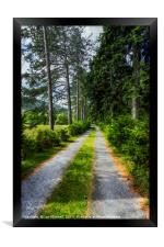 Country Path Walks, Framed Print