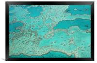 Looking down on the Great barrier reef , Framed Print