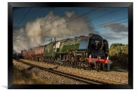The Duchess of Sutherland, Framed Print