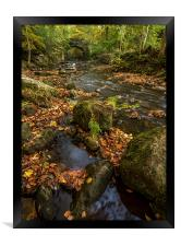 Maybeck Autumn Colours, Framed Print