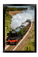 The Flying Scotsman, Framed Print
