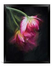 Fusion Flowers, Framed Print