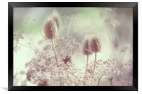 Icy Morning. Wild Grass , Framed Print