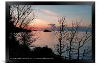 Sunrise at Meadfoot Beach in Torquay through the t, Framed Print