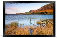 Loweswater in Autumn, Framed Print