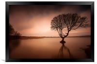 Kenfig pool and tree, Framed Print