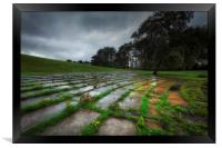 Ravenhill park in the rain, Framed Print