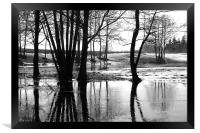 Waters of March, Framed Print