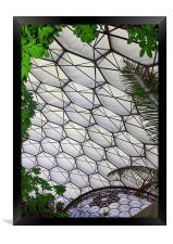 Eden Project Cornwall England, Framed Print