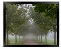 Foggy Morning Country Path, Framed Print