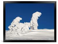 Human shaped trees covered with snow, Austria, Framed Print