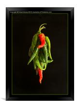 Drying the Chillies, Framed Print