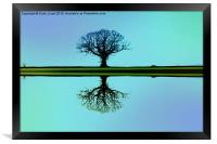 Solitary tree in blue symmetry, Framed Print
