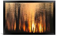 The forest of reflection, Framed Print