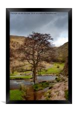 The Tree in the Dove, Framed Print