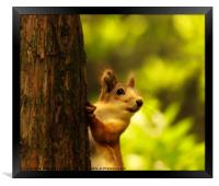 Did you say something?, Framed Print