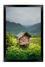 Living in a mountains , Framed Print