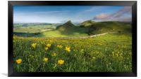 Buttercups and Parkhouse Hill, Framed Print