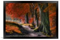 Ousbrough Woods-Autumnized 2, Framed Print