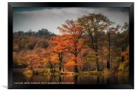 Autumn Colours at Rydal Water, Framed Print