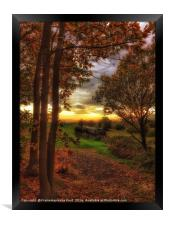 Kent and East Sussex Railway (K&ESR) in Autumn , Framed Print