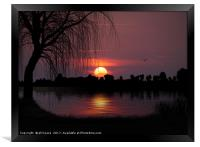 The Willow Tree, Framed Print