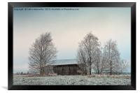 Old Wooden Barn Surrounded By Trees, Framed Print