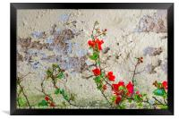 Red Flowers Over Damaged Wall, Framed Print