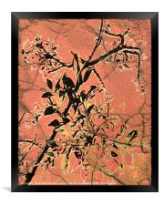 Floral Grungy Style Artwork , Framed Print