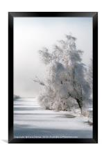 Coated with Icing, Framed Print