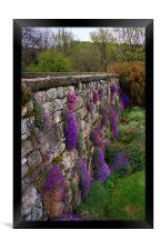 Wall of Flowers, Framed Print