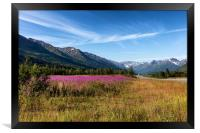 Wild flowers with mountains and forest in backgrou, Framed Print
