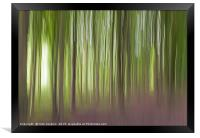 The Wentwood Forest in Monmouthshire, Framed Print