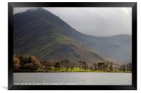 Buttermere Pines, Lake District, Framed Print