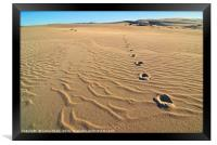 Beautiful sand dunes of the Rancho Guadalupe Dunes, Framed Print