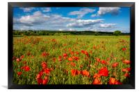 Gilling West Poppies, Framed Print