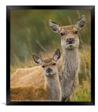 Mother and child, Framed Print