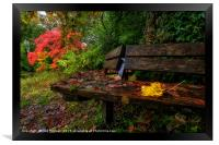 Autumn Colours at Bryngarw Country Park, Framed Print
