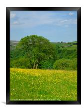 spring meadow and flowers, Framed Print