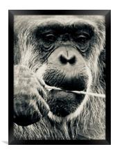 Deep In Thought, Framed Print