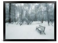 Snow-covered city park with a lonely bench, Framed Print