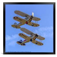 A pair of Gloster Gladiators, Framed Print