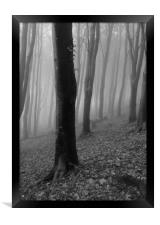 Silhouettes in the Mist, Mono, Framed Print