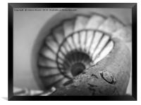 Old spiral staircase in black and white, Framed Print