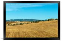 Typical landscapes for Siena Province in Tuscany, , Framed Print